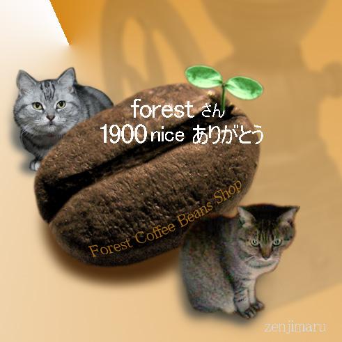 1900nicecard.jpg