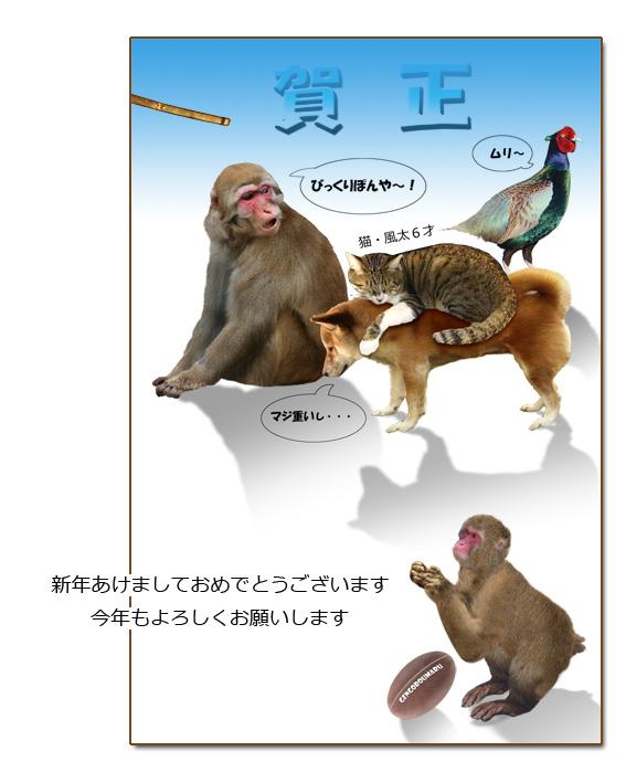 申年年賀状.jpg